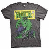 Distressed I Am The Hulk T-Shirt Grå