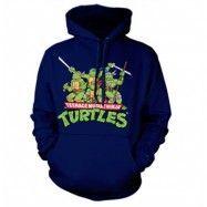 Turtles Distressed Group Hoodie, Hooded Pullover
