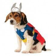 Thor Hund Maskeraddräkt - Small